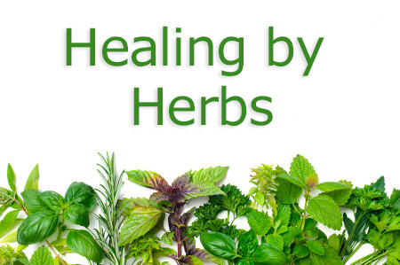 Healing by Herbs
